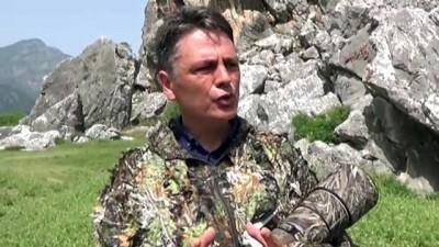 goller - Kuş gözlemcilerinin uğrak yeri: Dalyan Kanalı ve Köyceğiz Gölü - MUĞLA