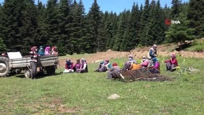 Hayvan otlattıkları meraları iş makinesiyle tahrip edilen köylüler nöbet tutuyor