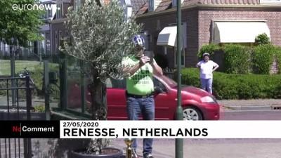 Bahşiş konusu henüz netleşmedi: Hollanda'da bir restoranda robot garson dönemi