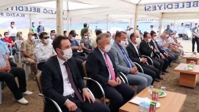 milyar dolar - Hazar Gölü'ne 420 bin yavru siraz balığı bırakıldı - ELAZIĞ