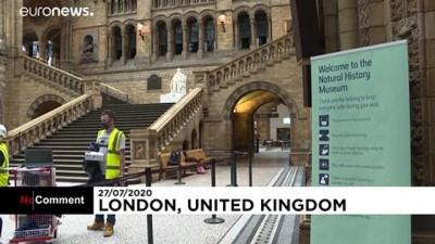 euronews - Covid-19 önlemleriyle kapatılan Londra Doğa Tarihi Müzesi yüzde 20 kapasiteyle açılıyor