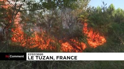 euronews - Fransa'da çıkan yangın 200 hektar ormanlık alanı küle çevirdi