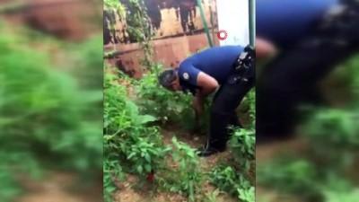 uyusturucu madde -  İstanbul'da uyuşturucu operasyonu: 6 gözaltı