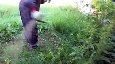 ogretmenler -  Yabani otlar okul müdürü tarafından tırpanla biçildi