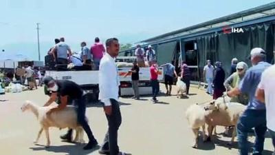 alisveris -  Kurban pazarında arefe bereketi