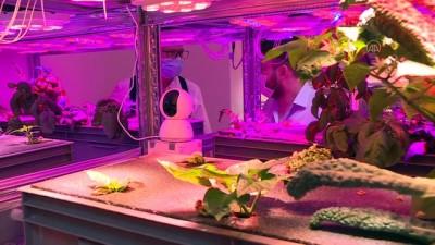 Rektör ve öğrencisi ortak olup yeni nesil bitki tesisi kurdu - İZMİR