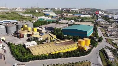 Türkkan'ın çiftliğindeki kaçak yapılar mahkeme kararı sebebiyle yıkılamıyor
