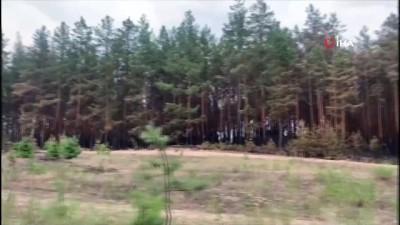 yangina mudahale -  - Ukrayna'da yangını söndürme çalışmaları sürüyor