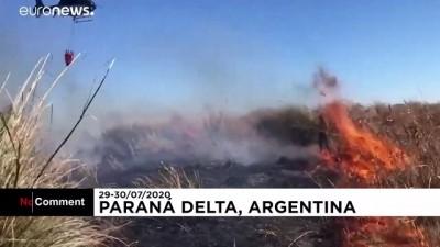euro - Arjantin Çevre Bakanı: Orman yangınlarını bitirmede anahtar hakimlerin elinde
