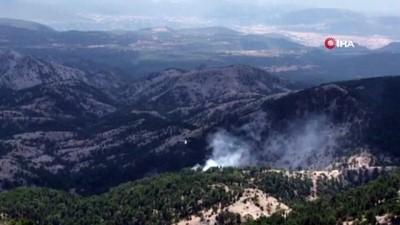ormanli -  Muğla'da orman yangını