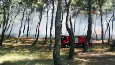 ormanli -  - Soma'da orman yangını