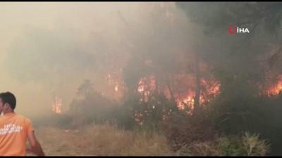 ormanli -  Sakarya'da orman yangını; bölgeye çok sayıda itfaiye ekibi sevk edildi