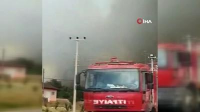 ormanli -  Sakarya'da ormanlık alanda çıkan yangında dumanlar gökyüzünü kapladı