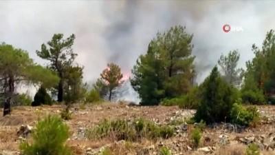 yukselen -  2 farklı noktada çıkan orman yangınına havadan ve karadan müdahale ediliyor