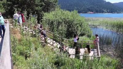 Abant bayram tatilinde doğaseverlerin uğrak noktası oldu - BOLU