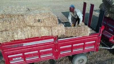 (DRONE) Konya Ovası'nda balya işçilerinin zorlu ekmek mücadelesi - KONYA