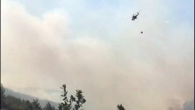 yukselen - Menderes'te orman yangını (2) - İZMİR