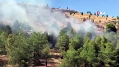 yukselen -  Şanlıurfa'da orman yangını