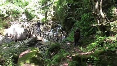 Kastamonu'nun keşfedilmeyi bekleyen güzelliği: Poyracık Şelalesi