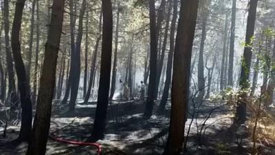 Aydos Ormanı'nda çıkan yangın söndürüldü - İSTANBUL