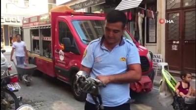 Motosiklet kaportasına sıkışan kediyi itfaiye kurtardı
