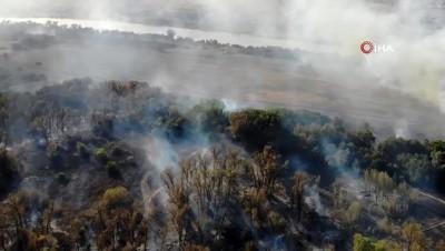 Rusya'da ormanlık alanda yangın: 2 ölü
