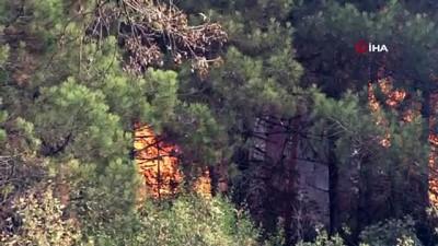 Anadolu Hisarında çıkan yangın kontrol altına alındı