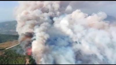 Zeytinlik ve makilik alanda çıkan yangın ormana sıçradı (2) - AYDIN