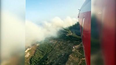 Zeytinlik ve makilik alanda çıkan yangın ormana sıçradı (4) - AYDIN