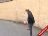 50 Yaşındaki Futbol Cambazı