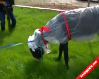Eşekler Bu Kez de CHP'nin Önünde Evlendi!