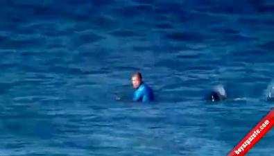 guney afrika - Sörfçüye köpek balığı saldırdı