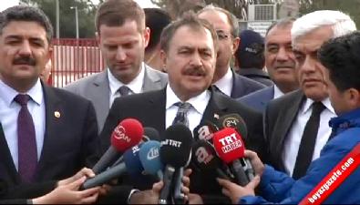 Bakan Eroğlu: Eylem yapanlar ağaç kesti