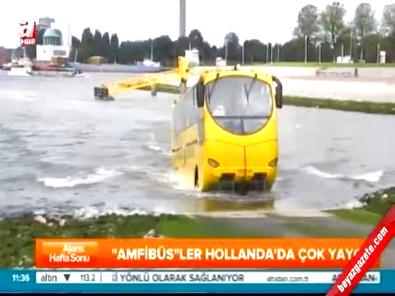 İstanbul'a hem karada hem denizde giden yüzen otobüs geliyor!
