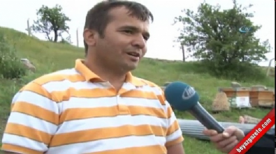 naim suleymanoglu - Naim Süleymanoğlu hayatını kaybetti