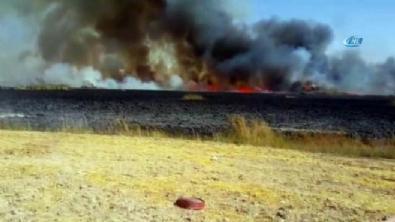 golbasi - Ankara'da yangın!