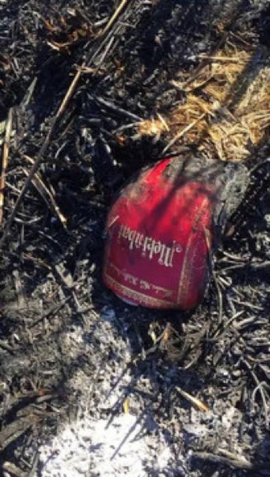 golbasi - FETÖ'cüler doğal yaşam alanını yaktı