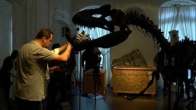 dinozor - Jurassic Dönemi'ne ait 2 dinozor iskeleti Paris'te açık artırmada satılacak