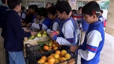 Minik öğrenciler meyvelerle Gazze'ye yardım gönderiyor