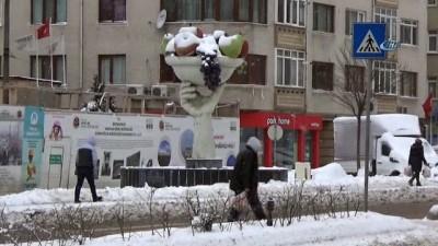 Edirne'de kar yağışı devam ediyor
