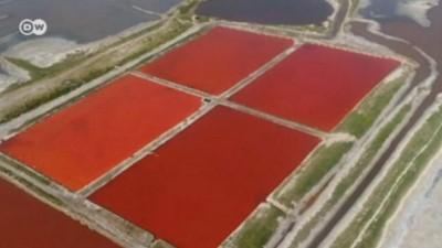 Bin yıllık tuz gölü rengarenk