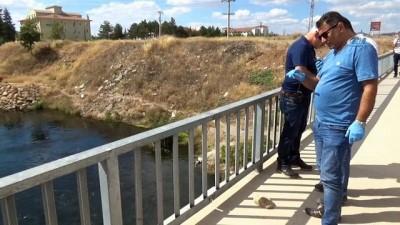 itfaiye muduru -  Kızılırmak'a atlayan genç boğuldu