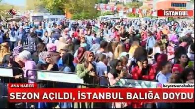 İstanbullular balığa doydu
