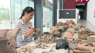 cene kemigi - 8 bin yıllık çipura kalıntısı bulundu - İZMİR