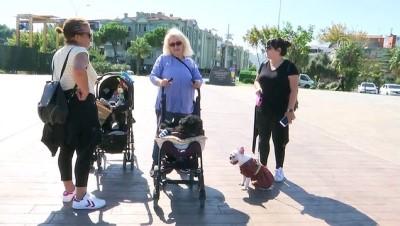 Yaşlı ve hasta köpeğine 'bebek' gibi bakıyor - SAMSUN