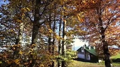 yayla turizmi - Hıdırnebi Yaylası sonbaharda görsel şölen sunuyor - TRABZON