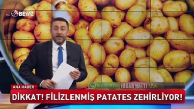 Filizlenmiş patates zehirliyor