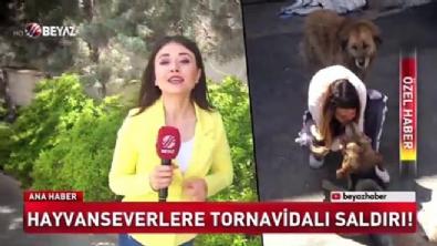 Hayvanseverlere tornavidalı saldırı