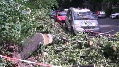 - Almanya'da Fırtına: 20 Yaralı