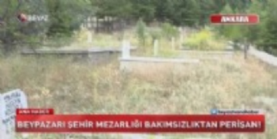 Mezarlar otlar arasında kaybolmuş!